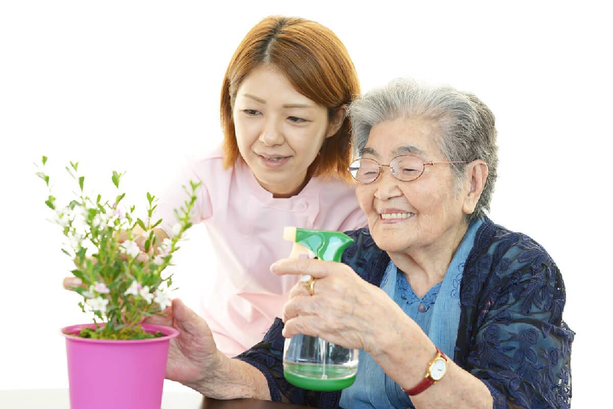 Home Care: Senior Care